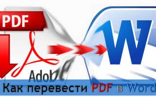 Как скопировать из pdf в word