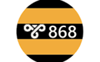 868 ошибка beeline
