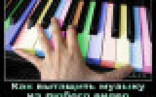 Вырезать музыку из видео ютуб