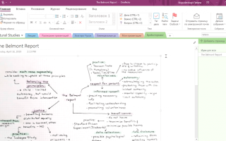 Microsoft office onenote что это